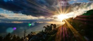 Sheep on mountain with sunset